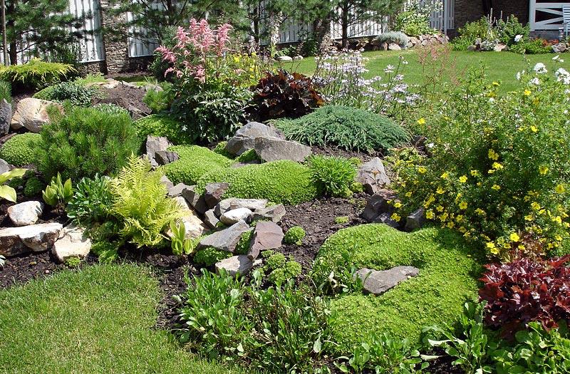Stunning Rock Garden Design Ideas 4 Diversified Services Ri