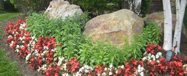 Go Bold With Boulders!